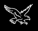 WhiteHawkLogo