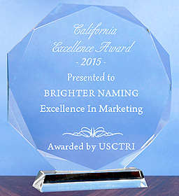 Brighter Award for excellence in marketing